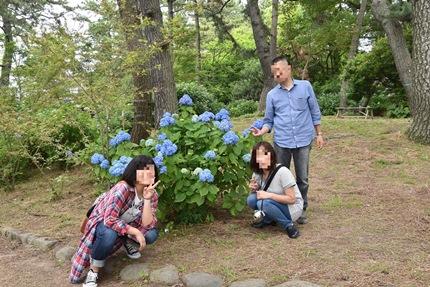 紫陽花と家族