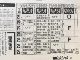 1988サマーファイト・シリーズ9