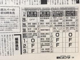 1988サマーファイト・シリーズ10