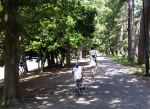 hashidate-cycling