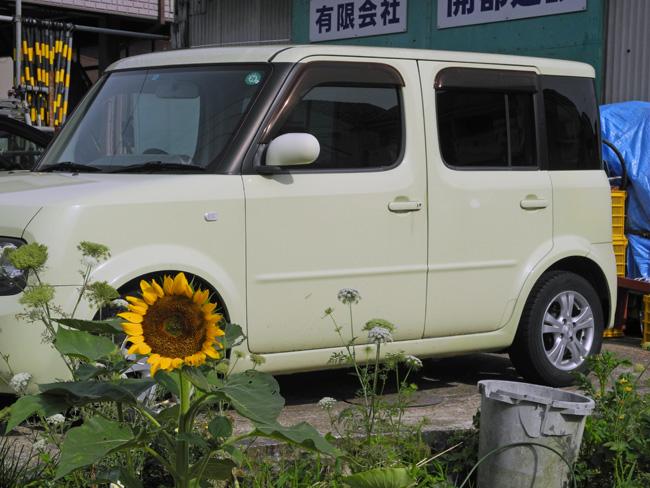 280601-1.jpg