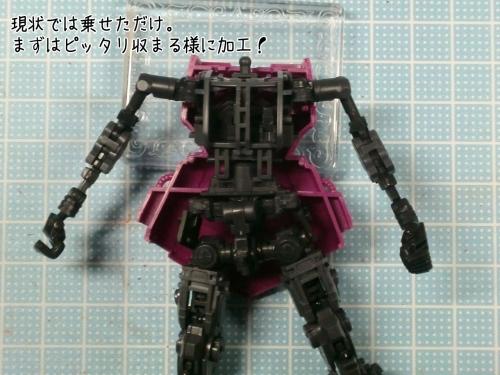 CIMG8441.jpg