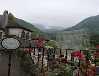 箱根ガラスの森美術館から小涌谷を望む