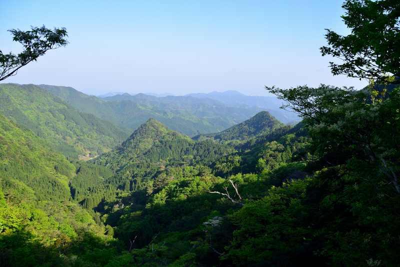 犬ヶ岳 (5)