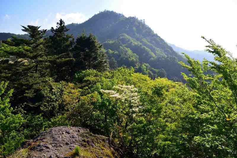 犬ヶ岳 (3)