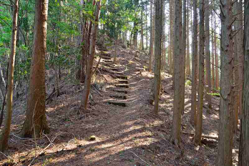 犬ヶ岳 (2)