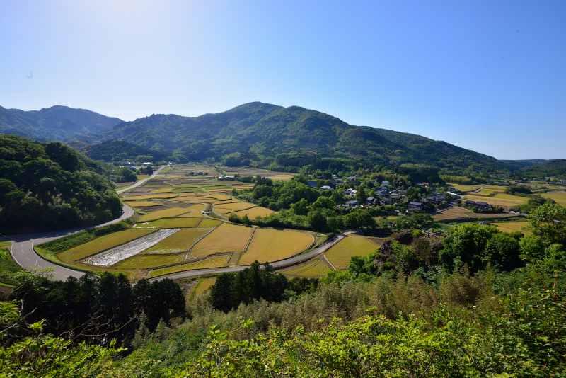 田染荘 (3)