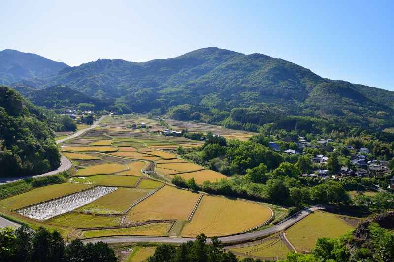 田染荘 (2)