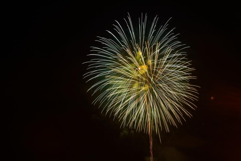 日田川開き観光祭 (20)