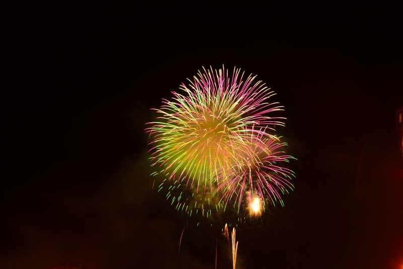 日田川開き観光祭 (30)