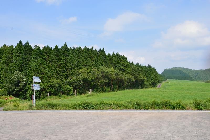 亀石山 (1)