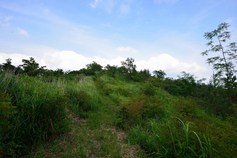 亀石山 (15)