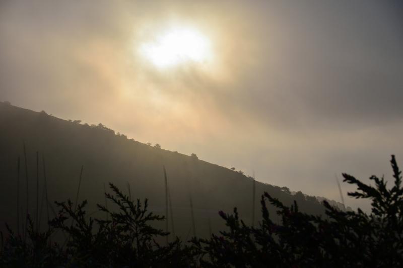 霧ヶ峰 (1)