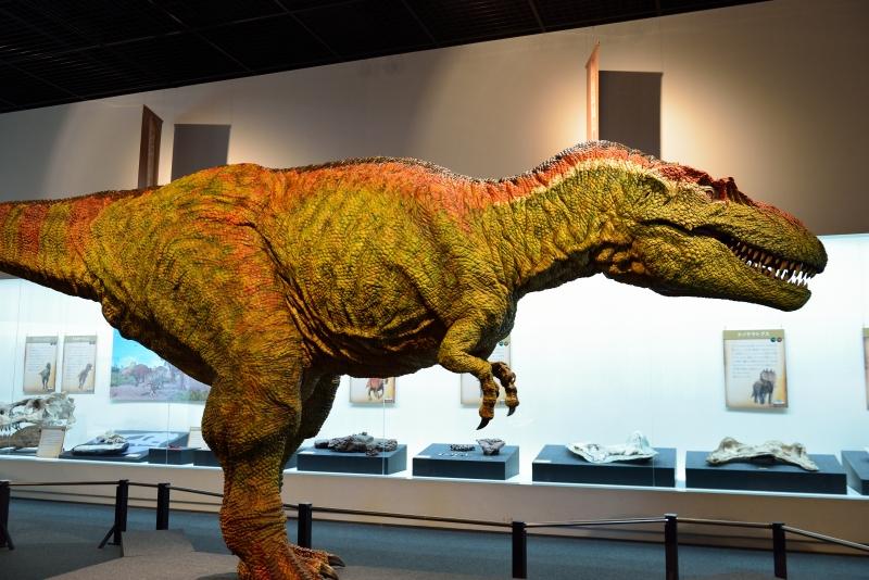 恐竜博物館 (4)