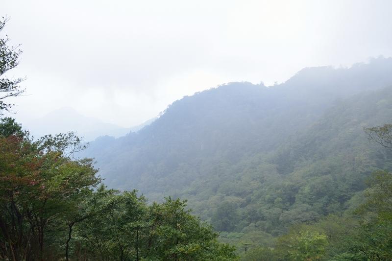 英彦山 (11)