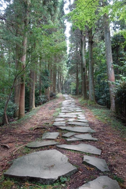 日本一の石段 (8)