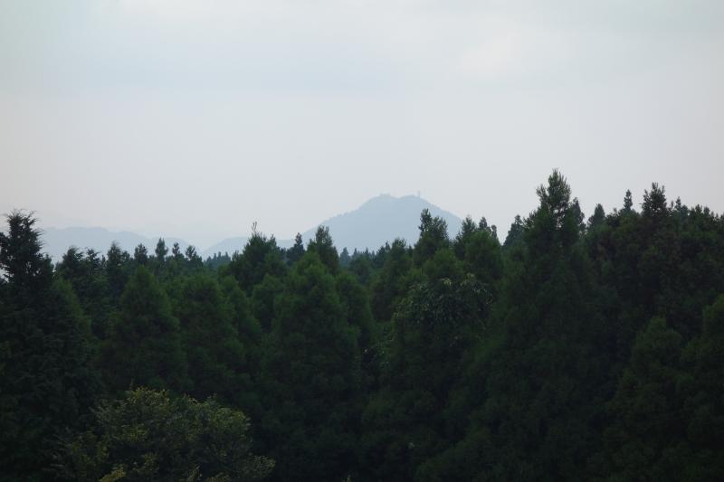 日本一の石段 (19)