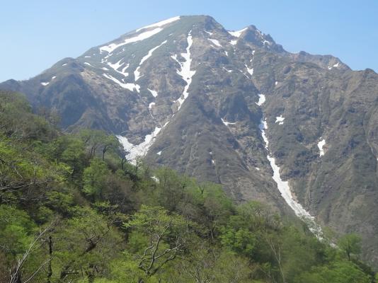 天神尾根からの谷川岳