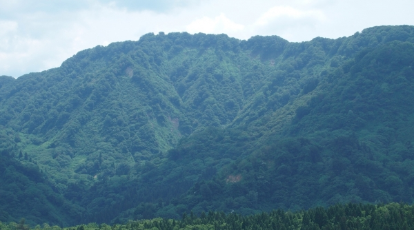 観鋸台から鋸山を望む