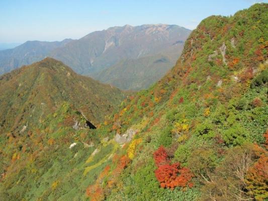 大源太山北面の紅葉と遠方の巻機山