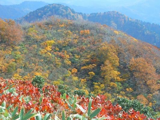 紅葉する山肌