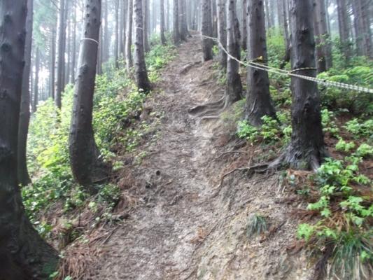 急坂にはロープもある