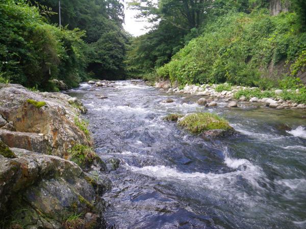 この日の粥川