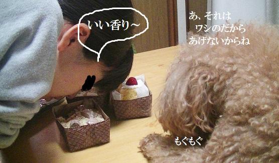 PIC_1496.jpg