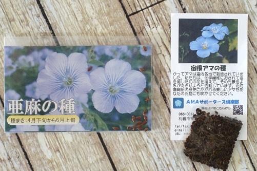 DSC06105 - コピー