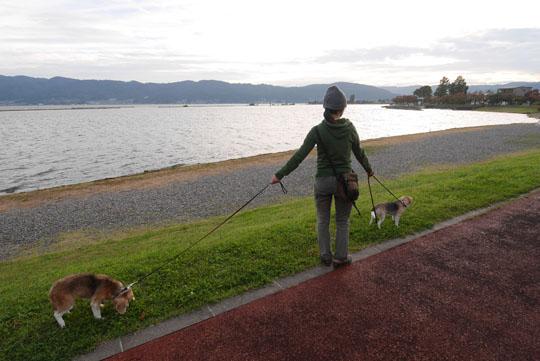 121諏訪湖散歩