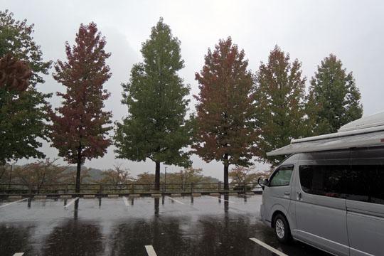 126翌朝は雨だった