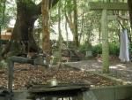 豊浦神社10