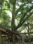 豊浦神社11