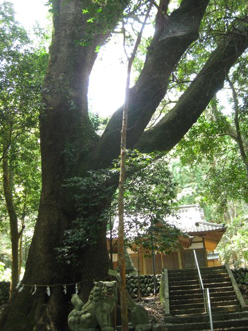 豊浦神社12