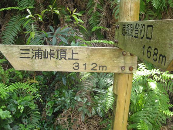 熊野古道・三浦峠道(熊ケ谷道)02-10