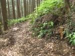 熊野古道・三浦峠道(熊ケ谷道)03-09
