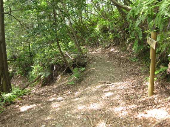 熊野古道・三浦峠道(熊ケ谷道)03-06