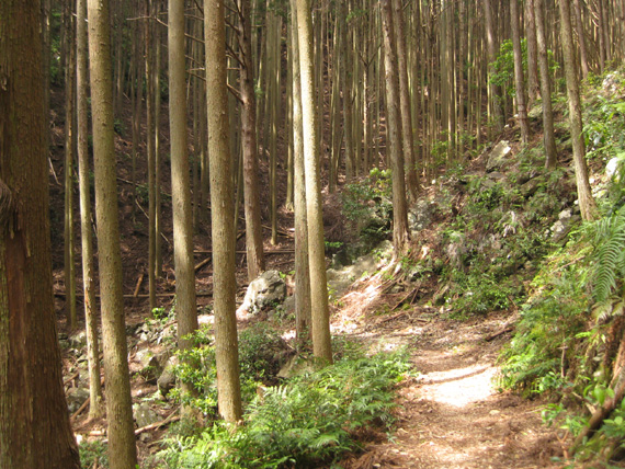 熊野古道・三浦峠道(熊ケ谷道)04-01