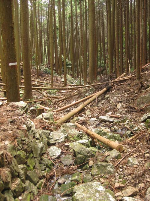 熊野古道・三浦峠道(熊ケ谷道)04-05