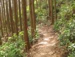熊野古道・三浦峠道(熊ケ谷道)04-06
