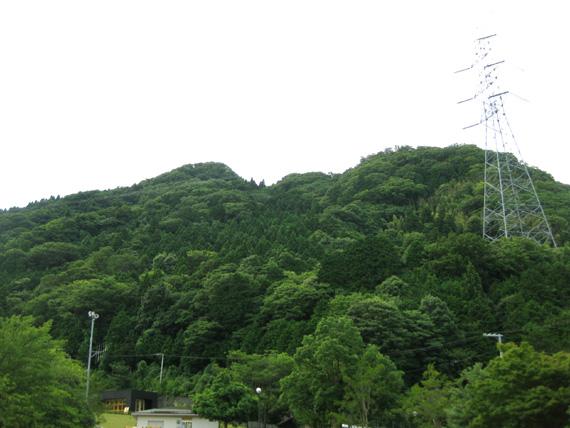 青葉神社(福井)-21