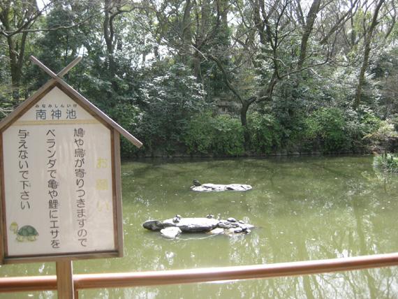 熱田神宮・清め茶屋05