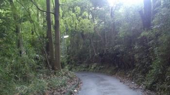 神社までの道中