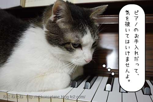 ピアノのお手入れだって気を抜いてはいけませんよ。