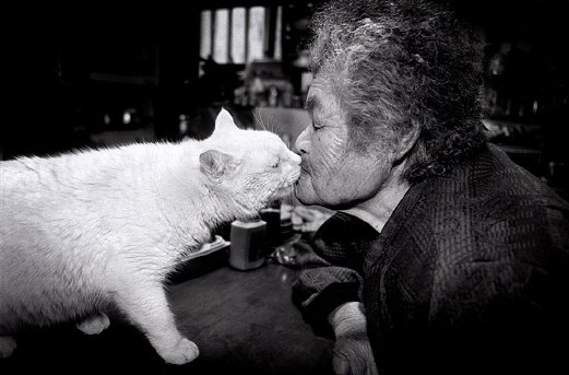 0d grandmother-and-cat-miyoko-ihara-fukumaru-9