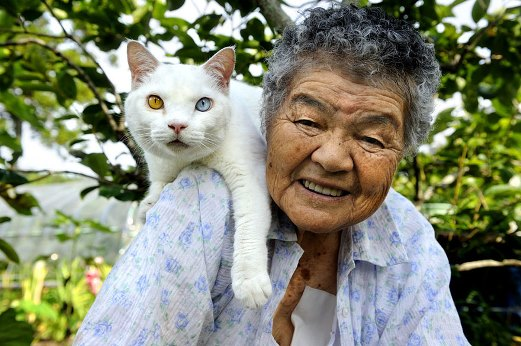 1k1 grandmother-and-cat-miyoko-ihara-fukumaru-17
