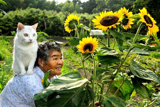 1l grandmother-and-cat-miyoko-ihara-fukumaru-2