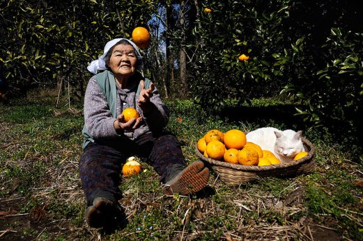 1pgrandmother-and-cat-miyoko-ihara-fukumaru-12
