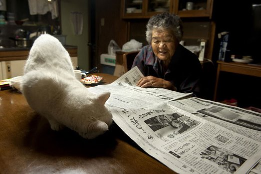 1rgrandmother-and-cat-miyoko-ihara-fukumaru-16