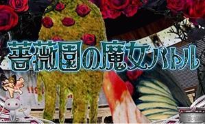 magica-cz-kaiseki2.jpg